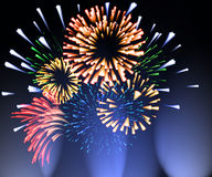 Fireworks 1. Fireworks of different shapes sizes and colors Royalty Free Stock Photo