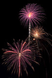 Beautiful fireworks display lights up the nighttime sky Stock Image