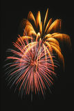 Beautiful fireworks display lights up the nighttime sky royalty free stock photos