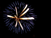 Fireworks. Colored fireworks in the sky Stock Image