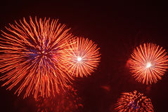 Fireworks. Made the sky so bright and colors royalty free stock photography