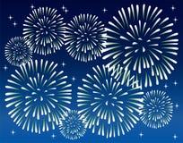 Fireworks. Vector fireworks on the dark sky Stock Photography