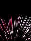 Fireworks. Display on the 4th of July Royalty Free Stock Images