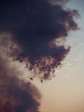 Fireworks. Sky Explosion during fireworks show royalty free stock images