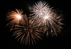Fireworks. New years fireworks on a black sky royalty free stock photo