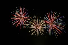 Fireworks. New years fireworks on a black sky royalty free stock photography