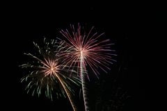 Fireworks. New years fireworks on a black sky royalty free stock image