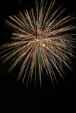Fireworks. Large burst of fireworks against a black sky Stock Photography