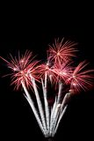 Fireworks. A Symmetrical Firework Display at night Royalty Free Stock Photo