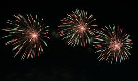 Fireworks. New years fireworks on a black sky royalty free stock images