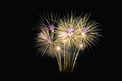 Fireworks. Fireworks in gold on the night of July 4 Stock Image
