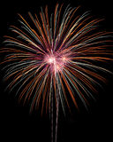 Fireworks. Multiple fireworks on black sky royalty free stock photography