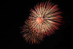 Fireworks. ! Royalty Free Stock Photography
