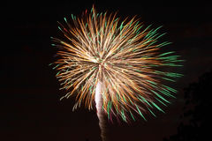Fireworks. ! Royalty Free Stock Images