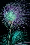 Fireworks. Colorful fireworks display on New Years night Stock Image