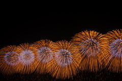 Fireworks. Firework display against a black sky Royalty Free Stock Images