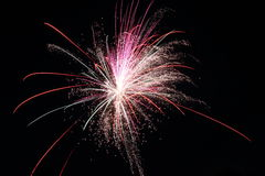 Fireworks Royalty Free Stock Image