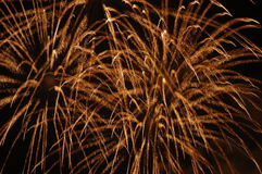 Fireworks. In the sky Stock Images