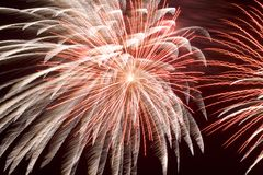 Fireworks (2561) royalty free stock photo
