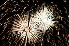 Fireworks. A delicate burst of fireworks in the night sky Royalty Free Stock Photos
