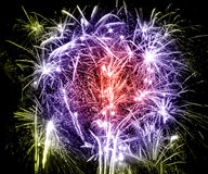 Fireworks. Of various colors bursting against a black background royalty free stock photos
