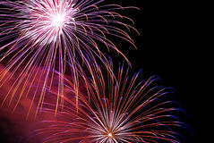 Fireworks. Colorful fireworks on the dark sky royalty free stock image