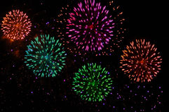 Fireworks. Colourful fireworks on the night sky Royalty Free Stock Image