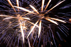 Fireworks. Exploding in the sky Royalty Free Stock Photo