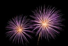 Fireworks. New Year fireworks (Scheveningen 2007 royalty free stock photos