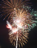 Fireworks. A set of fireworks during a display Stock Images