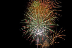 Fireworks. 4th of July fireworks Royalty Free Stock Images