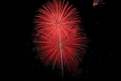 Fireworks. 4th of July fireworks Royalty Free Stock Photo