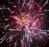 Fireworks. Fourth of july firework finally Stock Photos