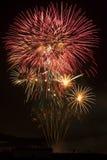 Fireworks. Several firework rockets at night Royalty Free Stock Photos