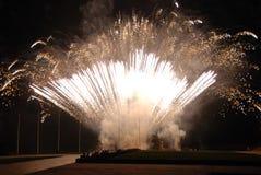 Free Fireworks Royalty Free Stock Photo - 3895625
