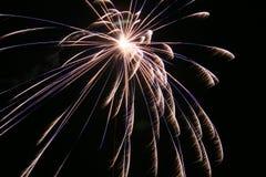 Free Fireworks Royalty Free Stock Photo - 3961485