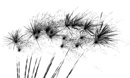 Fireworks. A photograph of fireworks with a neagative process applied stock image