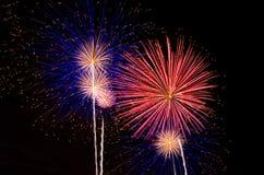 Free Fireworks Stock Photos - 43808903