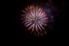 Fireworks. Isolated at night in a typical festivity royalty free stock image