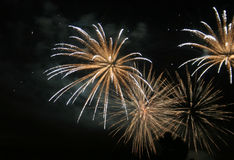 Fireworks #5 Stock Image