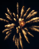 Fireworks 5. Beautiful fireworks with a crisp background Stock Photography