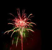 Fireworks. Beautiful fireworks on the black background royalty free illustration