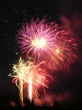 Fireworks 6. Pink explosion stock image