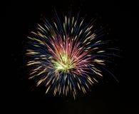 fireworks Στοκ εικόνες με δικαίωμα ελεύθερης χρήσης