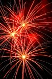 Fireworks. Independence Day celebration fireworks explosion on the night sky Royalty Free Stock Photos