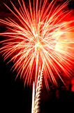 Fireworks. Independence Day celebration fireworks explosion on the night sky Royalty Free Stock Photography