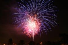 Free Fireworks Royalty Free Stock Photo - 7921005