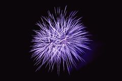 Fireworks abstract on dark background Stock Images