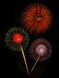 Fireworks against black sky Stock Photography
