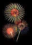 Fireworks against black sky Stock Image